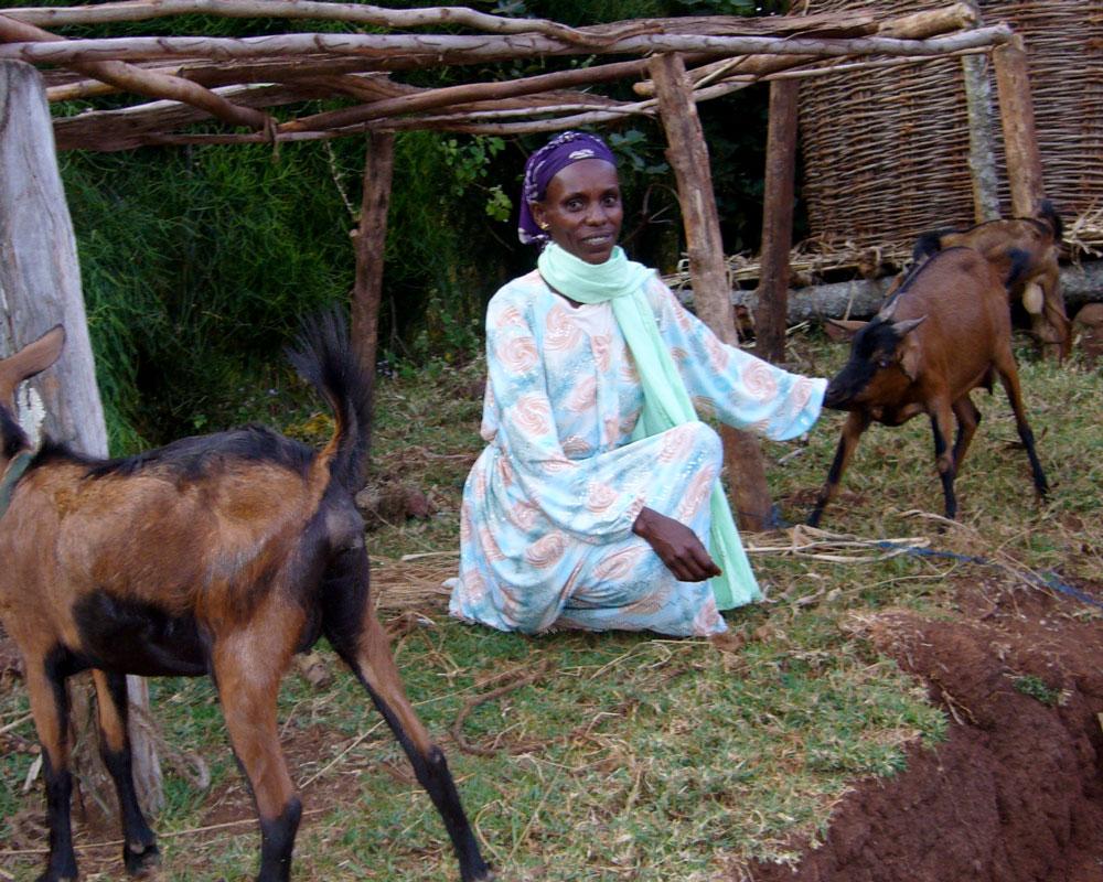 Foto von Bizunesh mit ihren Ziegen.